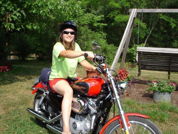 2006 Harley Davidson Sportster Custom 883