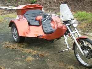 1989 Custom Trike