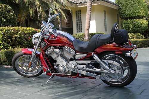 2005 Harley Davidson V-Rod in Delray Beach, FL