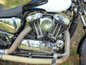 2005 Custom Sportster