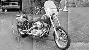 2001 Harley Davidson Softail