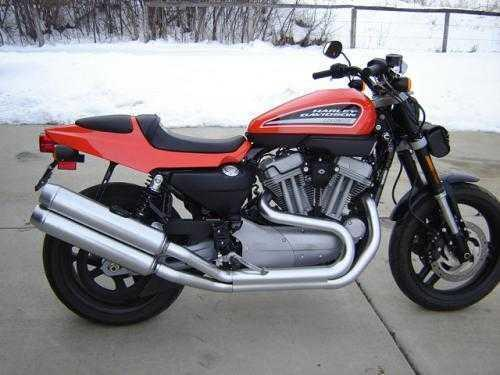 2009 Harley Davidson XR1200 in Loveland, CO