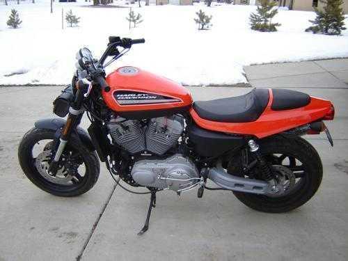 2009 Harley Davidson XR1200 Standard in Loveland, CO