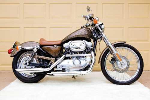 2000 Harley Davidson 883  Sportster in Lubbock, TX