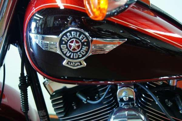 2013 Harley-Davidson FLSTF Softail Fat Boy