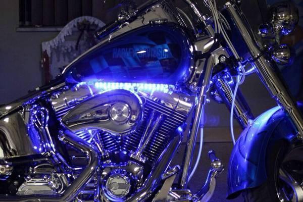 2000 Harley Davidson FLFST Fatboy in , KY